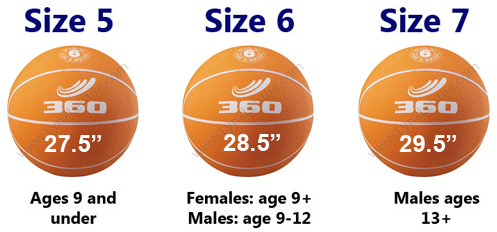 Basketball sizing
